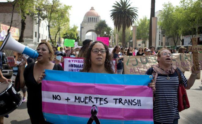 6 mujeres transgénero exitosas que rompen moldes en América Latina –  Plataforma LAC