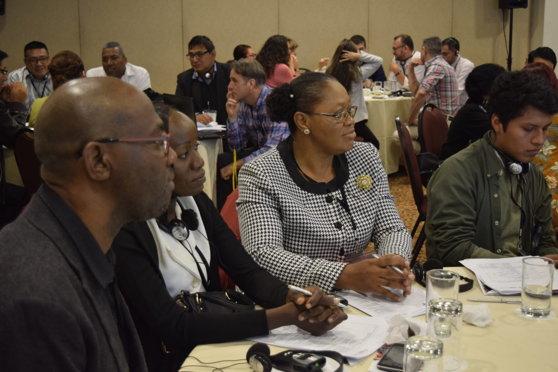 Third Regional Meeting LAC Platform
